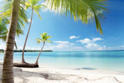 Tropical Paradise Ambergris Caye