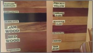 Types of Belizean Wood