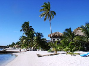 Beach at Exotic Caye Beach Resort