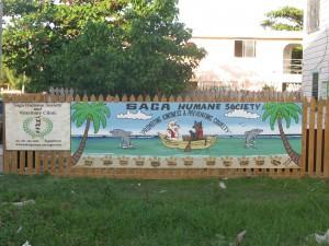 Saga Society on Ambergris Caye