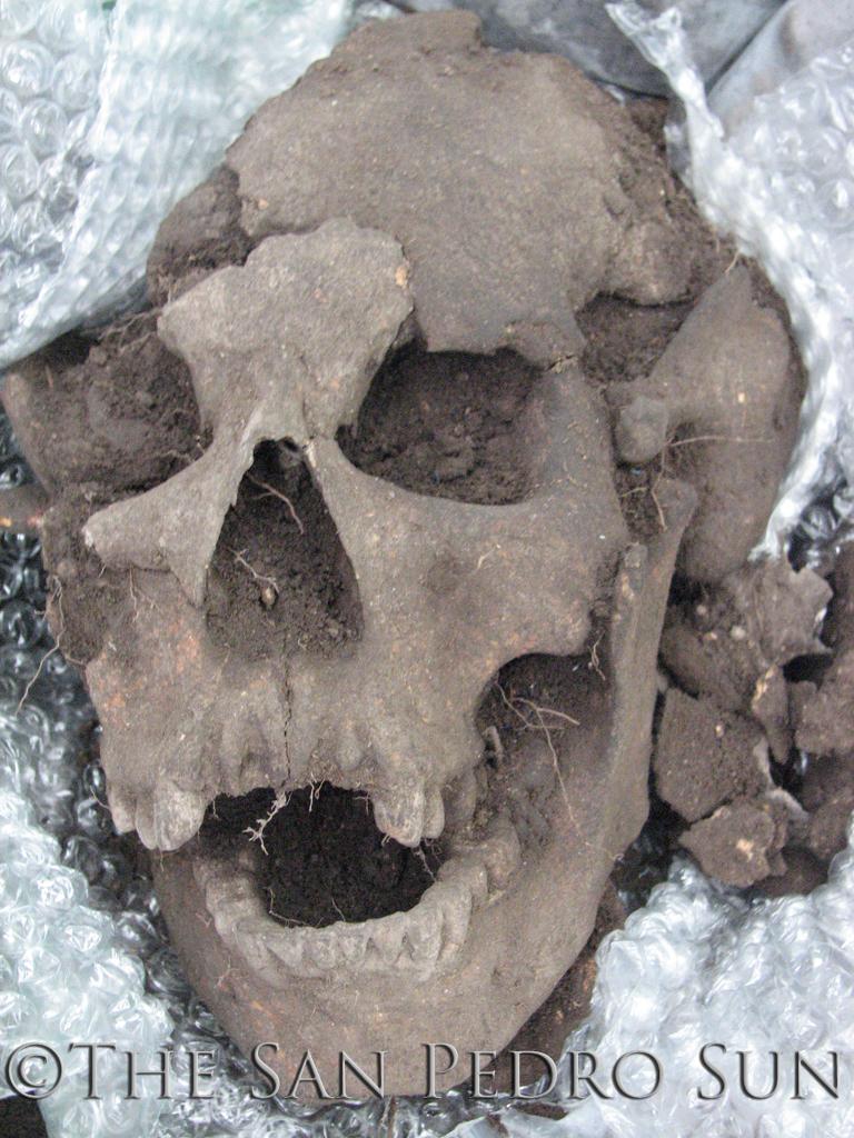 Marco Gonzalez Skull