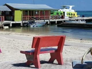 San Pedro dock from CentralPark