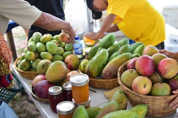 Fresh Mangoes to Celebrate Hopkins Heritage