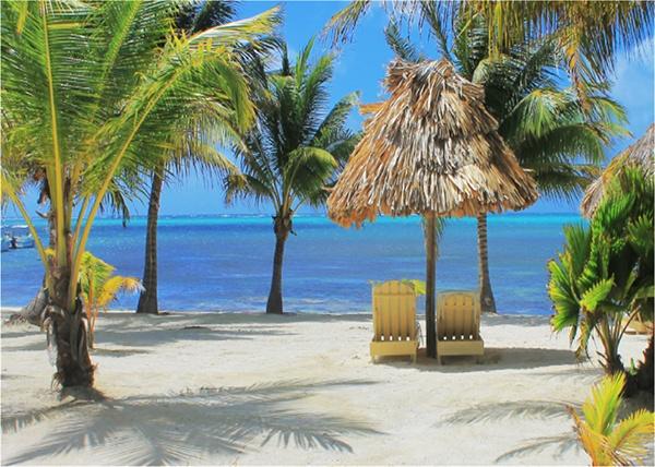 belize-beach.jpg