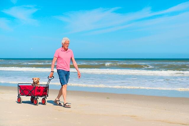 Man_and_Dog_on_Beach_iStock_000068660825_Large_1.jpg