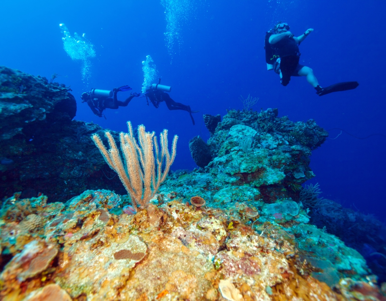 Divers, Ambergris Caye