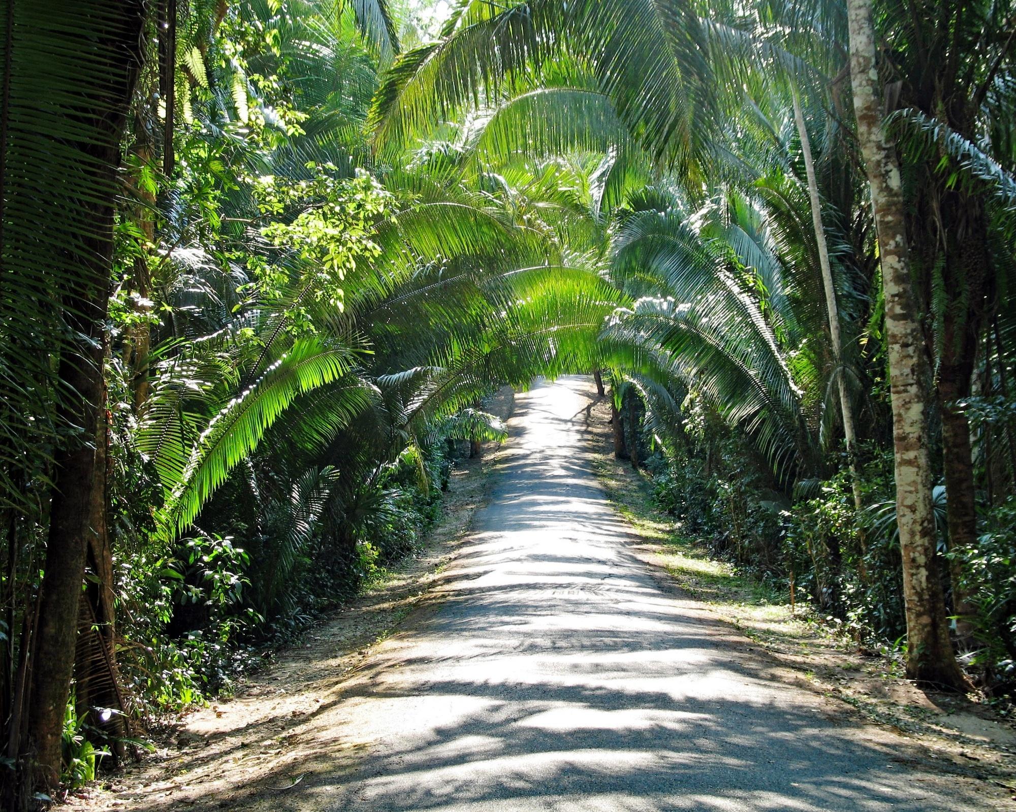 The Manatee Highway, Stann Creek District, Belize