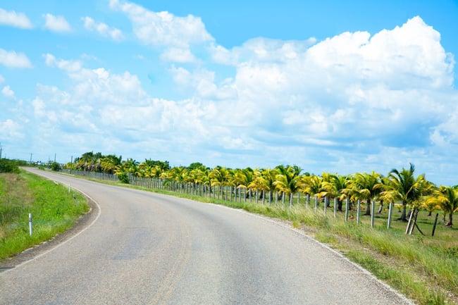 Cayo Countryside