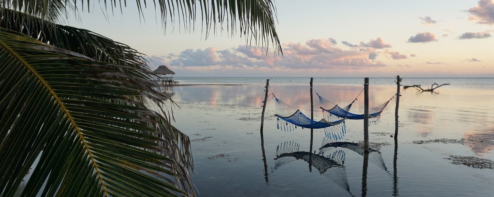 hammocks-in-belize.jpg
