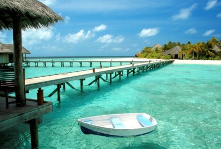 Tropical_Paradise
