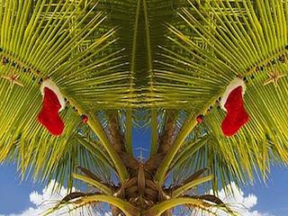 Palmtree Christmas