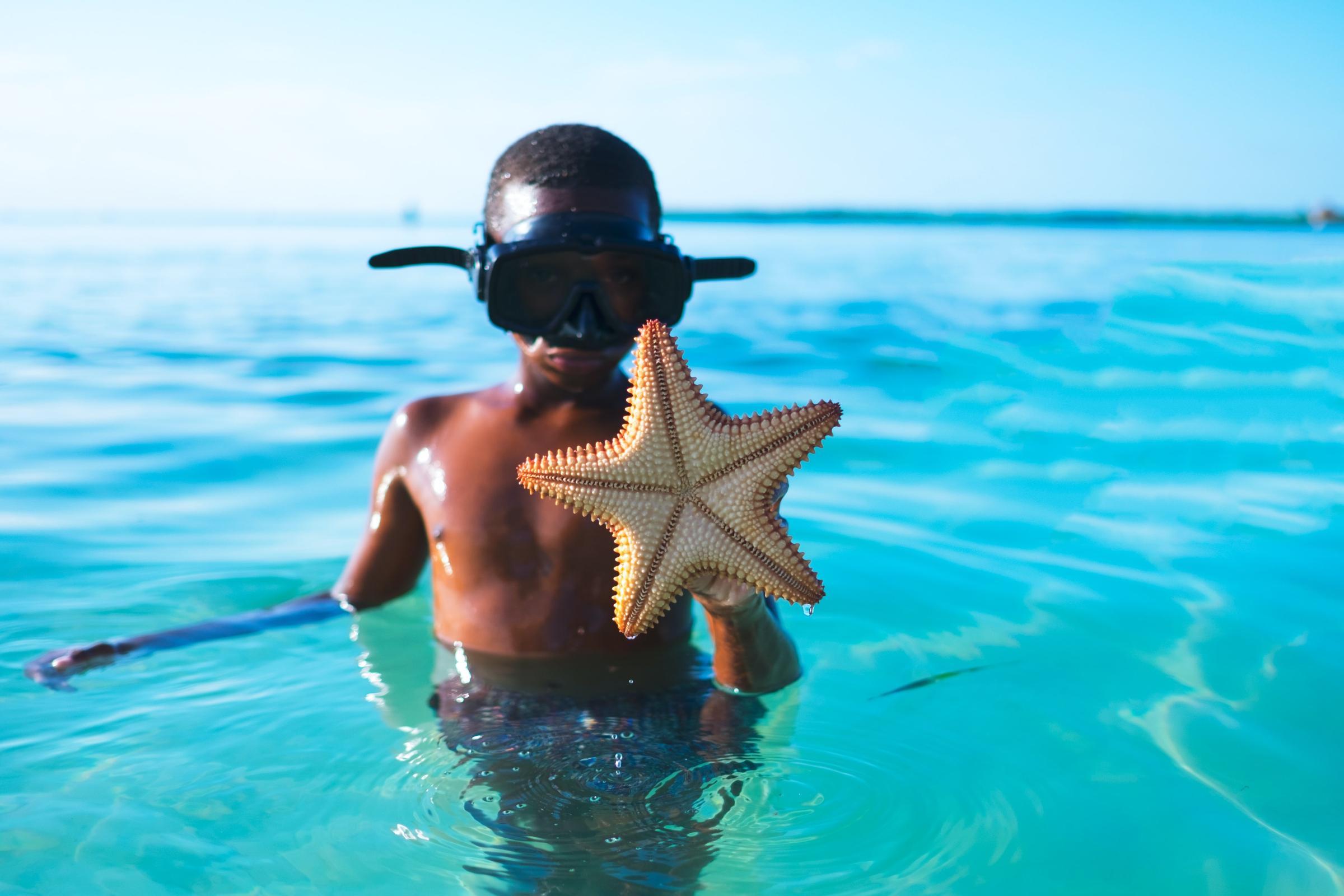 Little boy holding starfish - image by Claude Piché on Unsplash