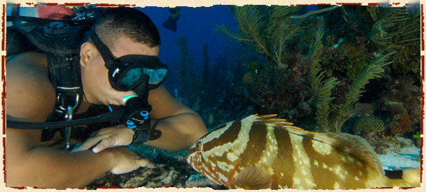 Snorkeling off Ambergris Caye Island in Belize